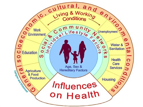 The medias influence on health